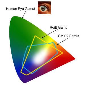 human eye gamut